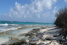 Canadian company proposes new plant in Jamaica