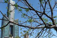 Taiwan accuses China of dumping