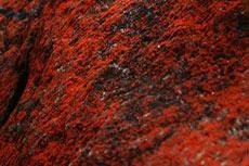 Rio Tinto signs MoU for iron ore JV