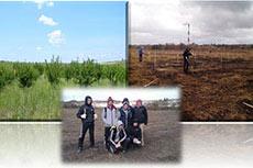 Belgorod Cement staff plant 3000 trees